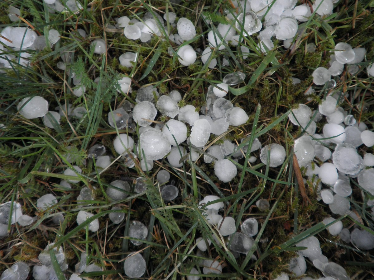 hail storm damage