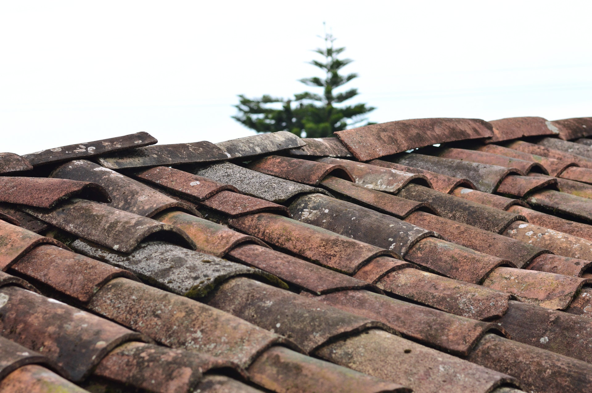 Seasonal Roof Repairs and Roof Maintenance